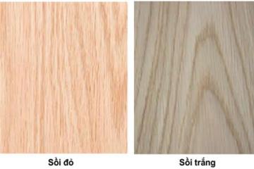 Nên chọn tủ bếp gỗ Sồi Nga hay tủ bếp gỗ Sồi Mỹ
